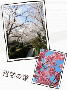 2015-04-02_19.53.26